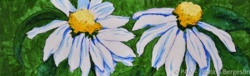 Wild Flower White