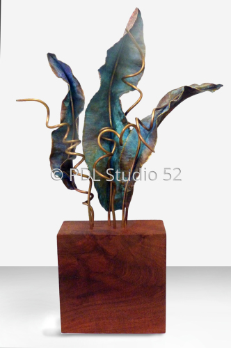 Seaweed I by Pat Daugherty  PDL Studio 52