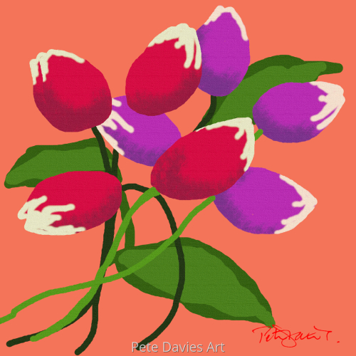 Tulip Heaven - Lush