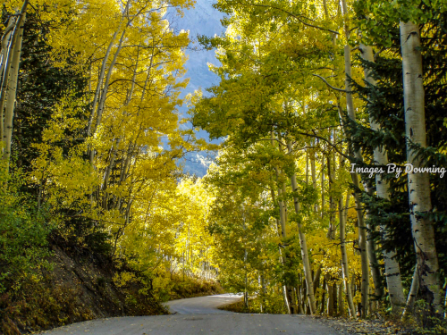 Crested Butte Backroad by Images By Downing