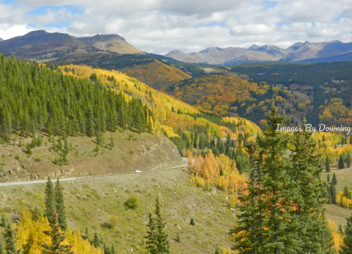 Million Dollar Highway Aspens