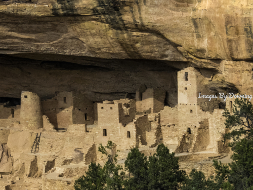 Cliff Palace in Mesa Verde National Park  by Images By Downing