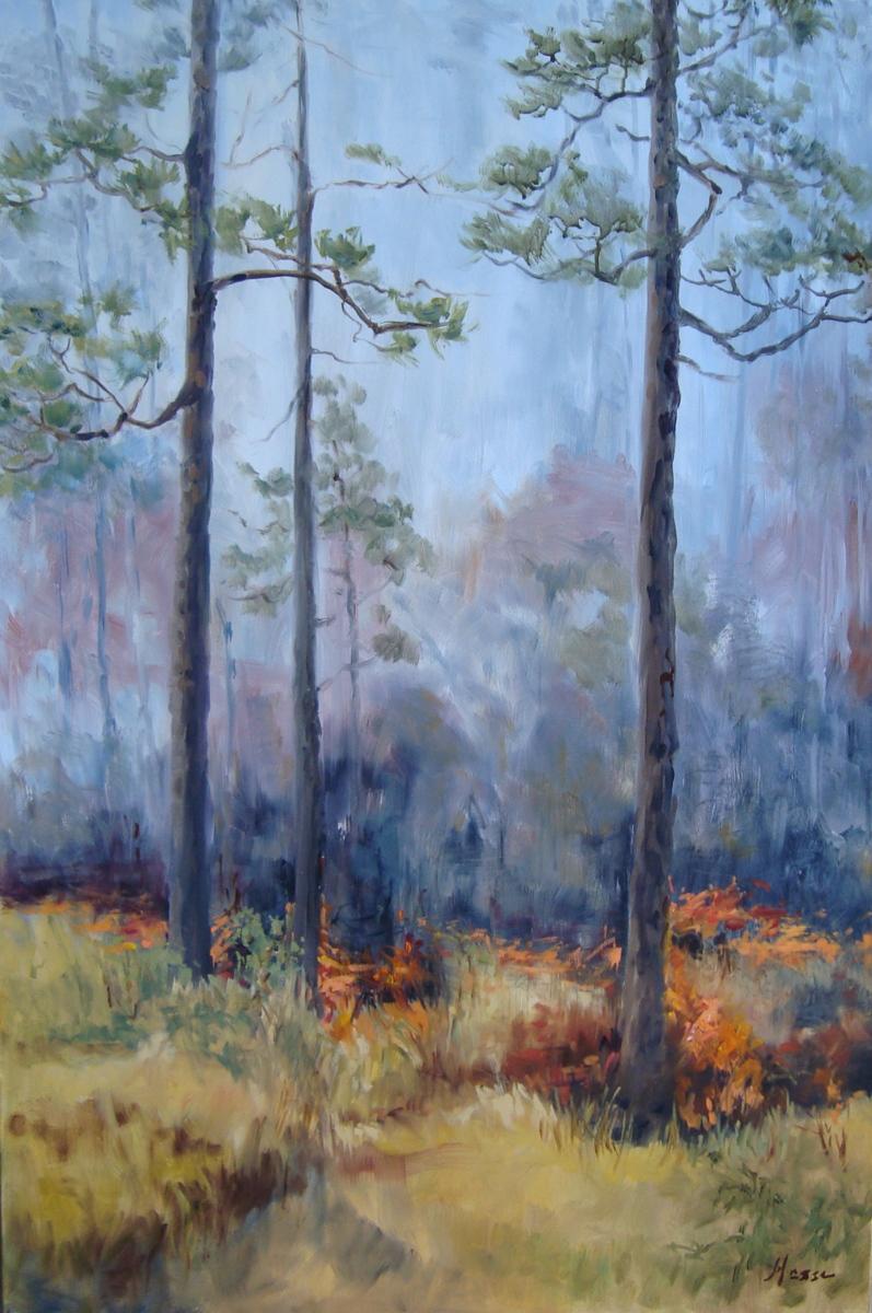 Prescribed Burn in Long Leaf Pine (large view)