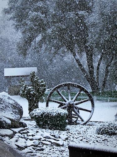 Mariposa snowfall