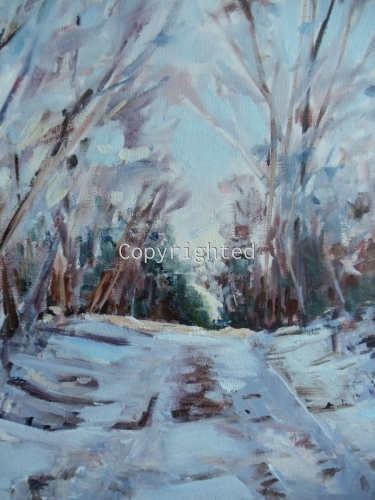 Snow- covered Path