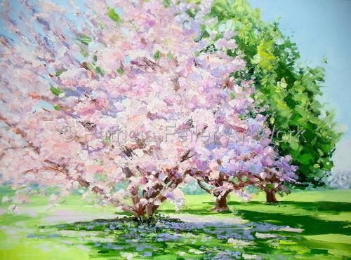 Magnolia Tree on Main Road Laurel