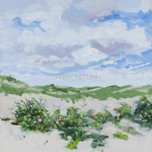 CLOUDS, DUNES AND WILD ROSES