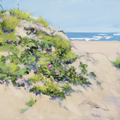 WILD ROSES ON THE DUNE