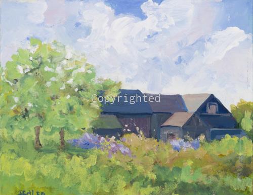 Little Southold Barns
