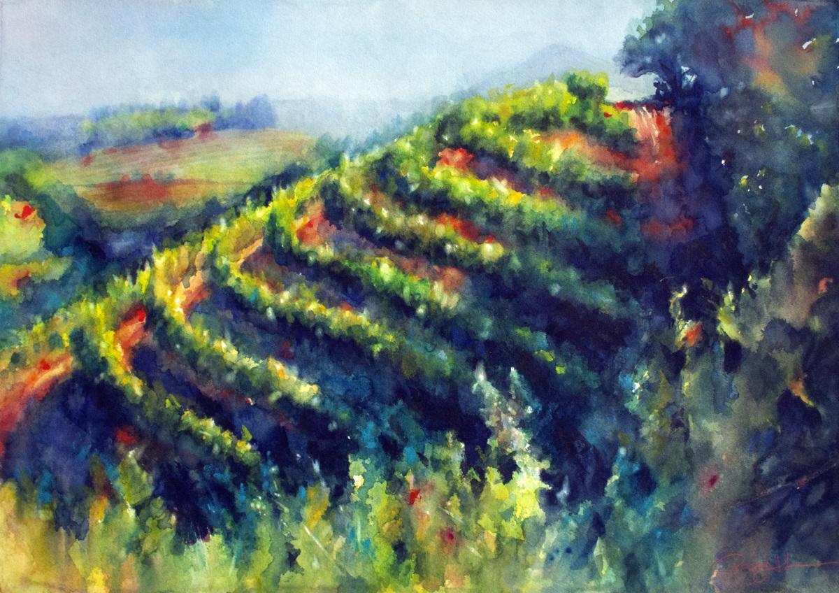 Spring Mountain Vineyard (print) (large view)