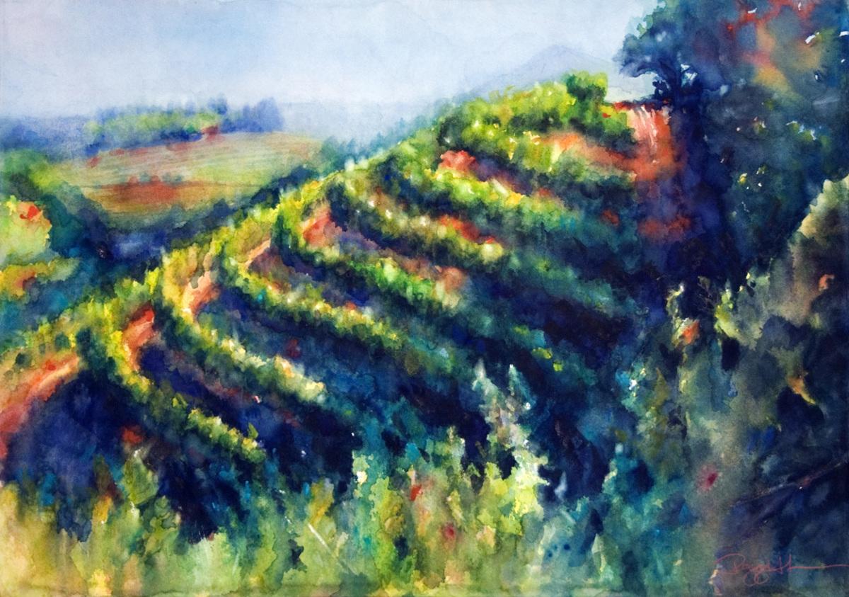 Spring Mountain Vineyard (large view)