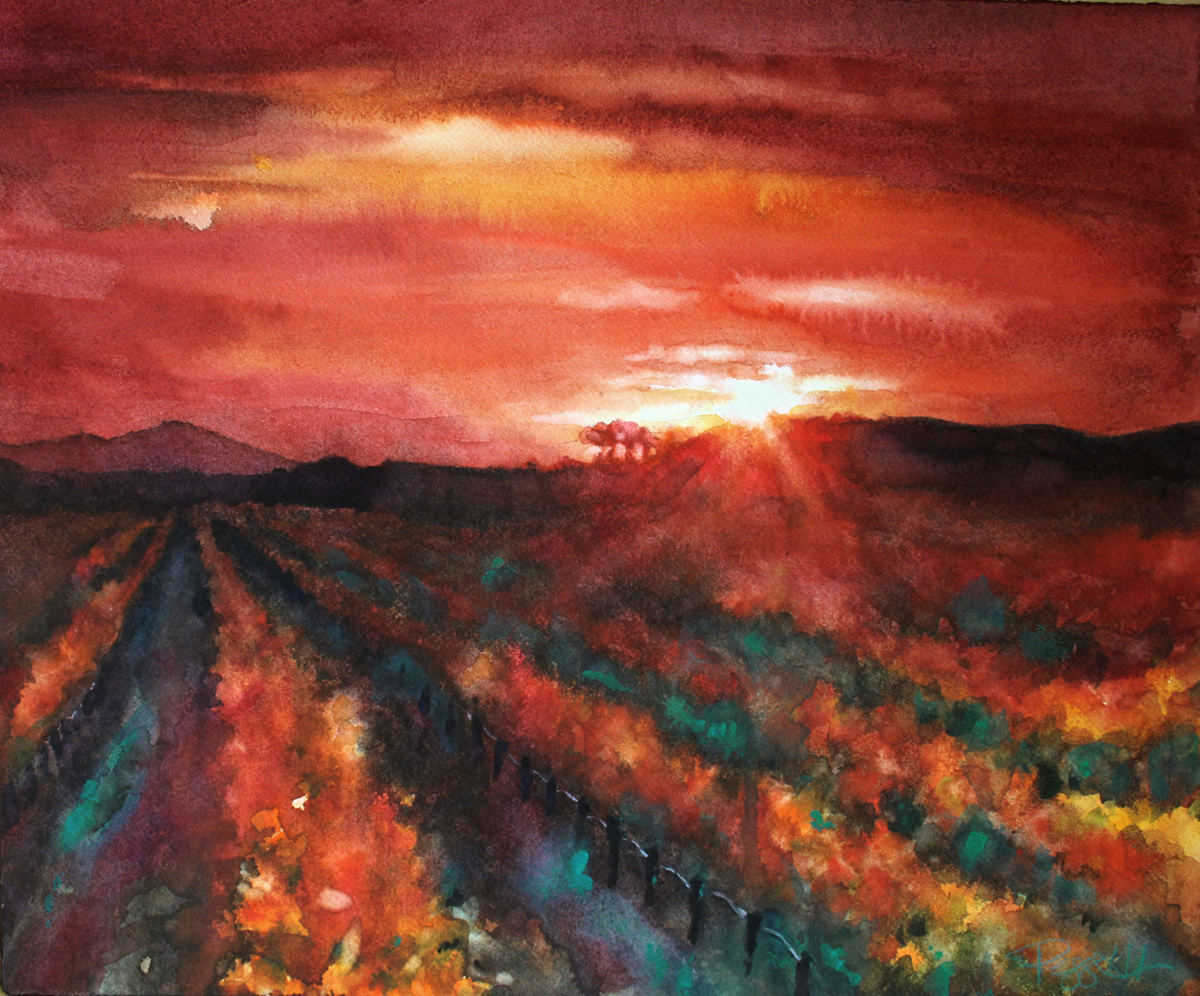 Sunset in Napa II (large view)