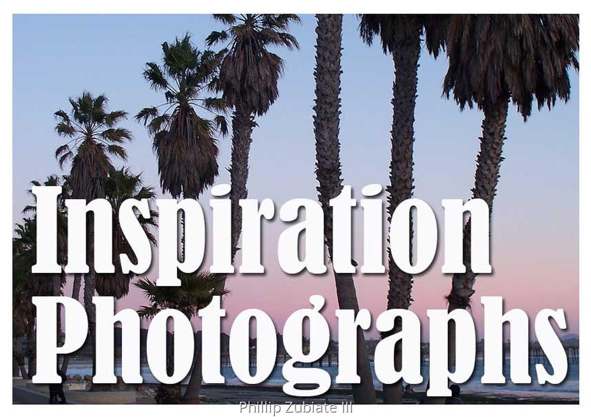 INSPIRATION PHOTOS (large view)