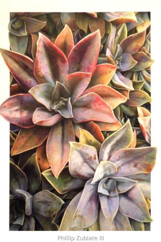 Malibu Succulents II, Mixed Media (large view)