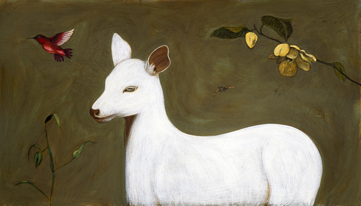 White Fawn (large view)