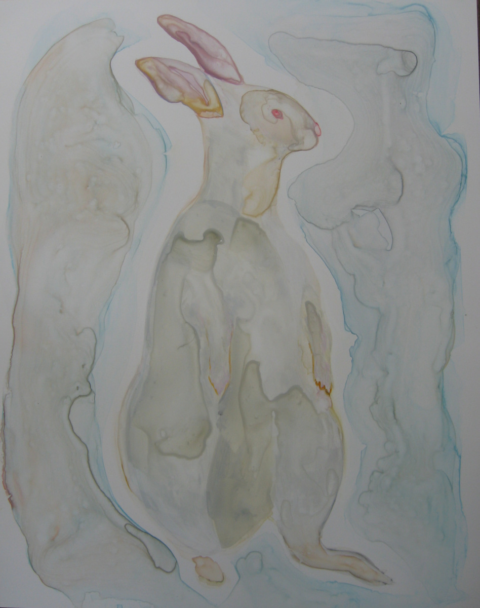 White Rabbit (large view)