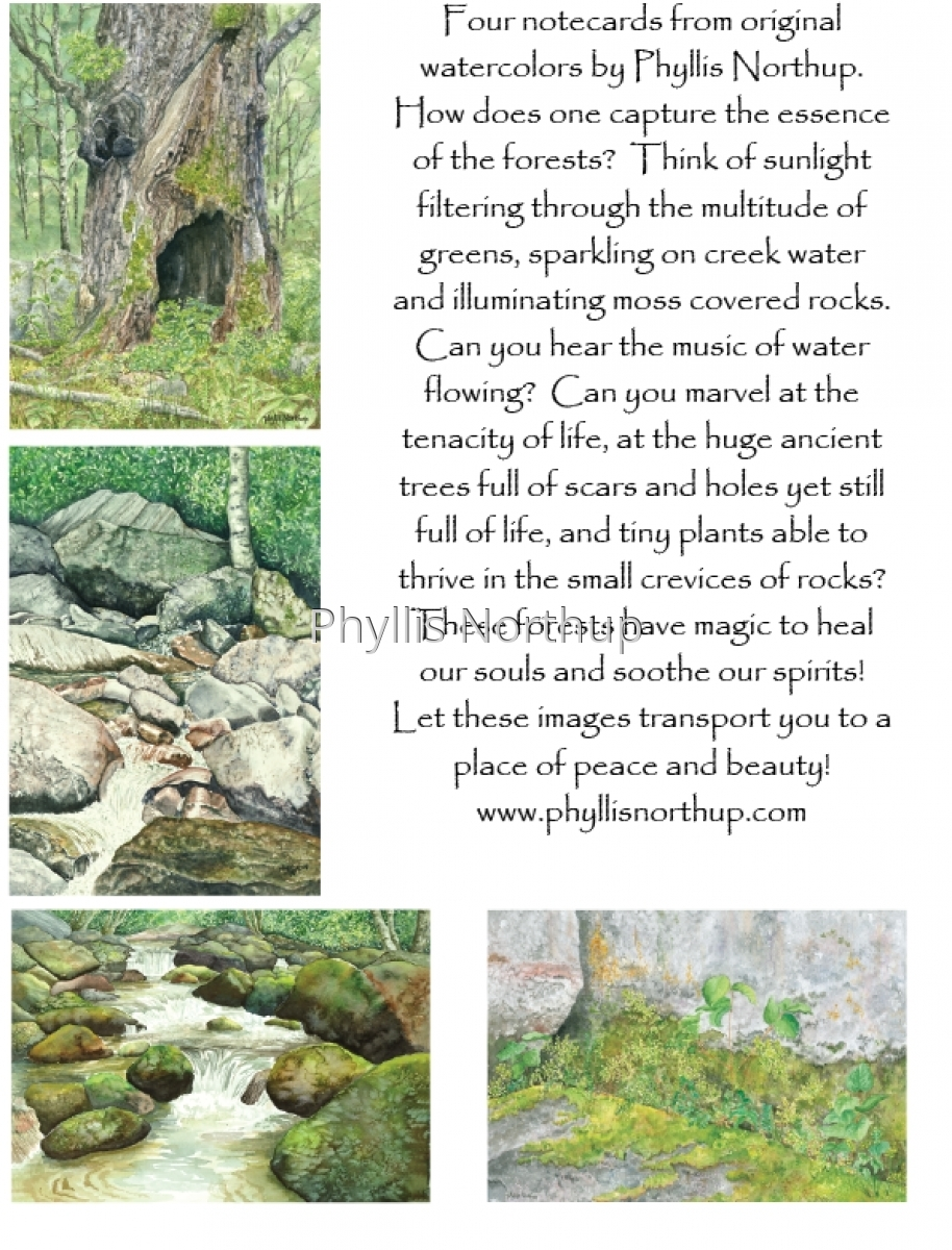 Forest Notecard Set (large view)