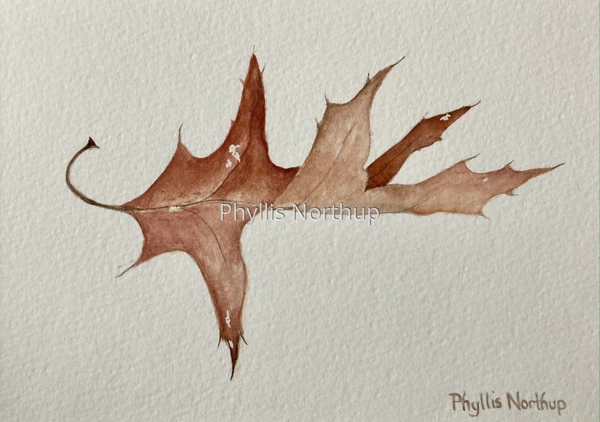 Oak Leaf (large view)