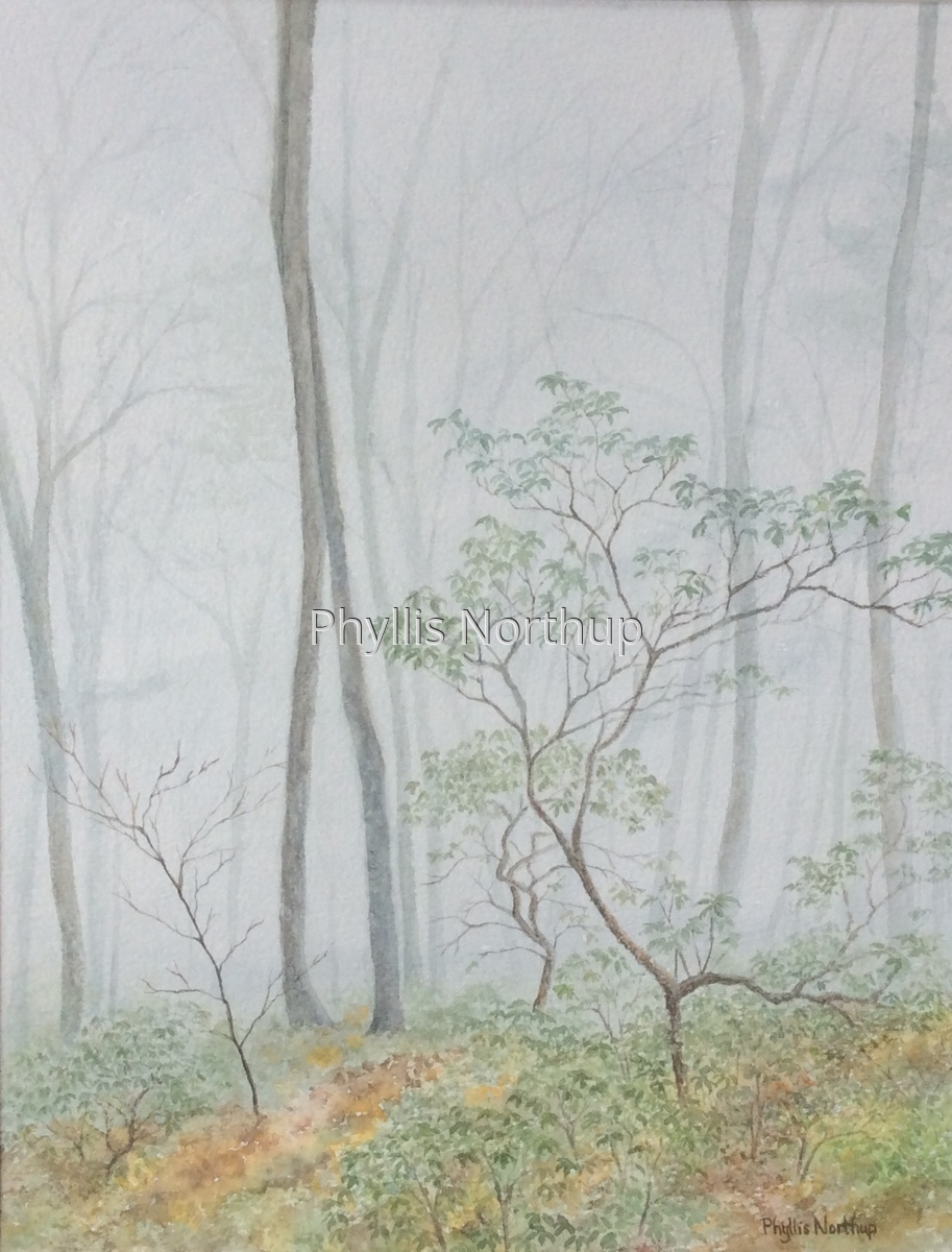 Shenandoah Mist (large view)