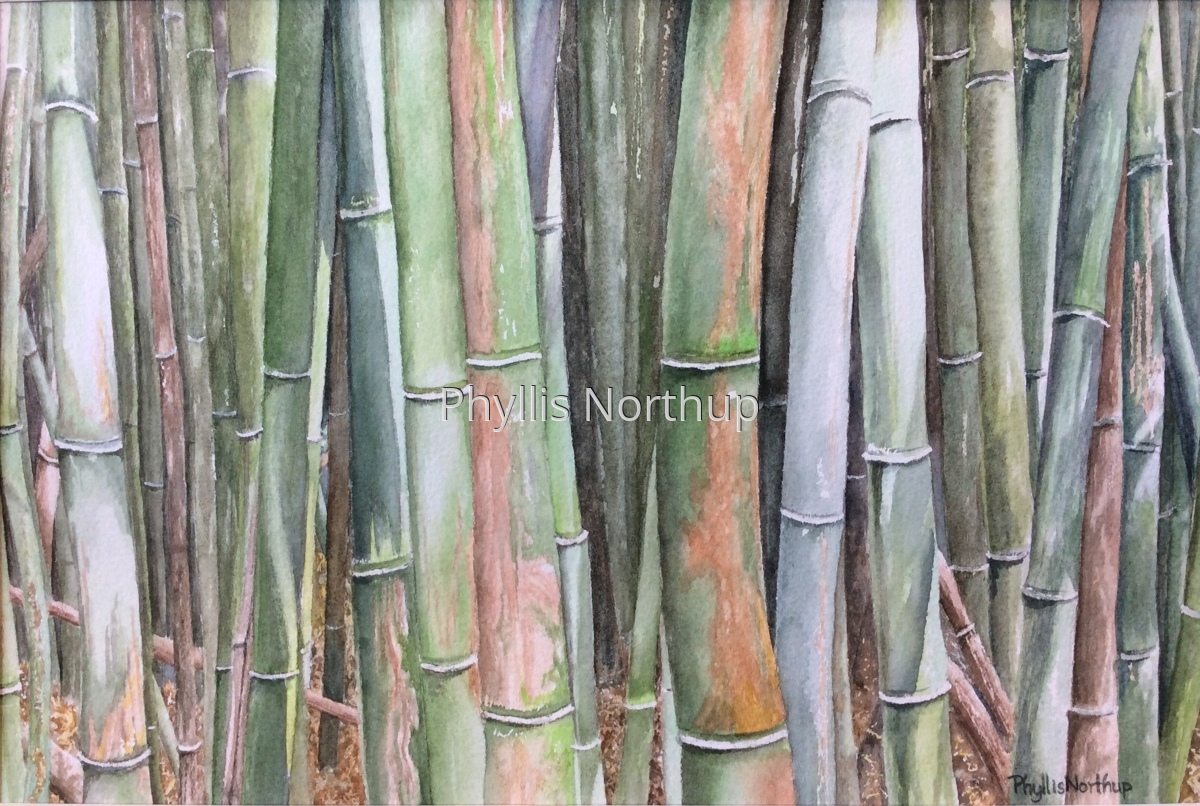 Zen of the Bamboo Forest (large view)