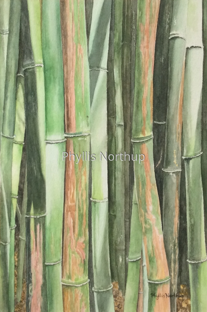 Bamboo Forest (large view)