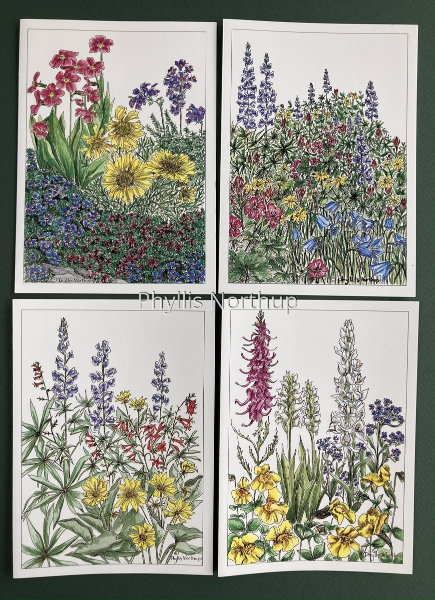 Wildflower Notecards (large view)
