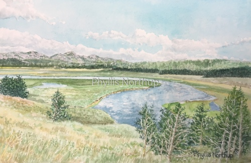 Hayden Valley, Yellowstone National Park by Phyllis Northup