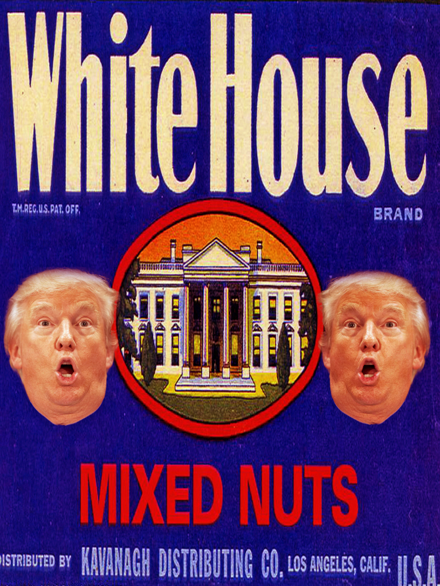 WHITE HOUSE NUT OR OUR NUT HOUSE (large view)