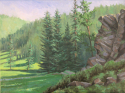 Upper Spring Creek I