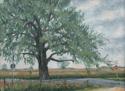 Prairie Giant (thumbnail)