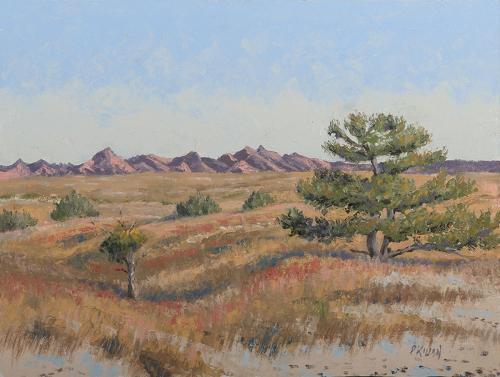 Buffalo Gap Grasslands  (large view)