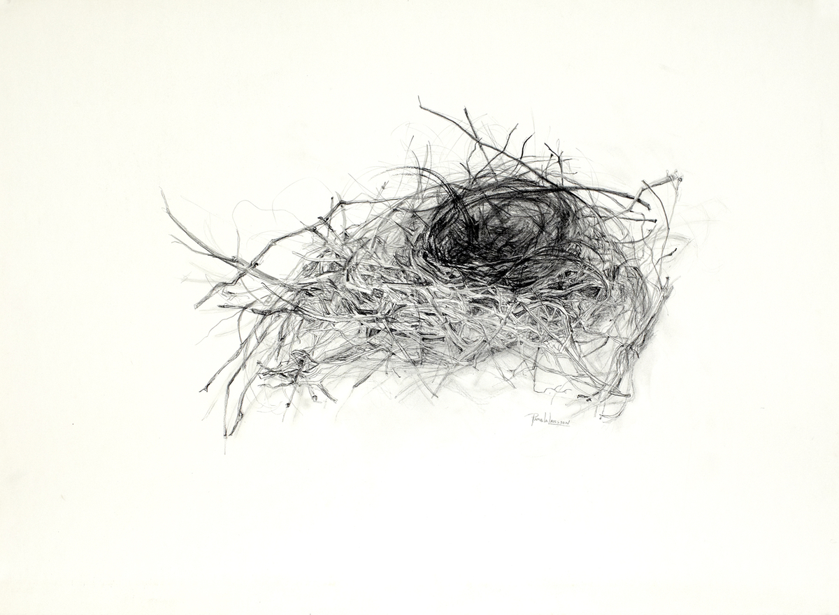 Nest 4 (large view)