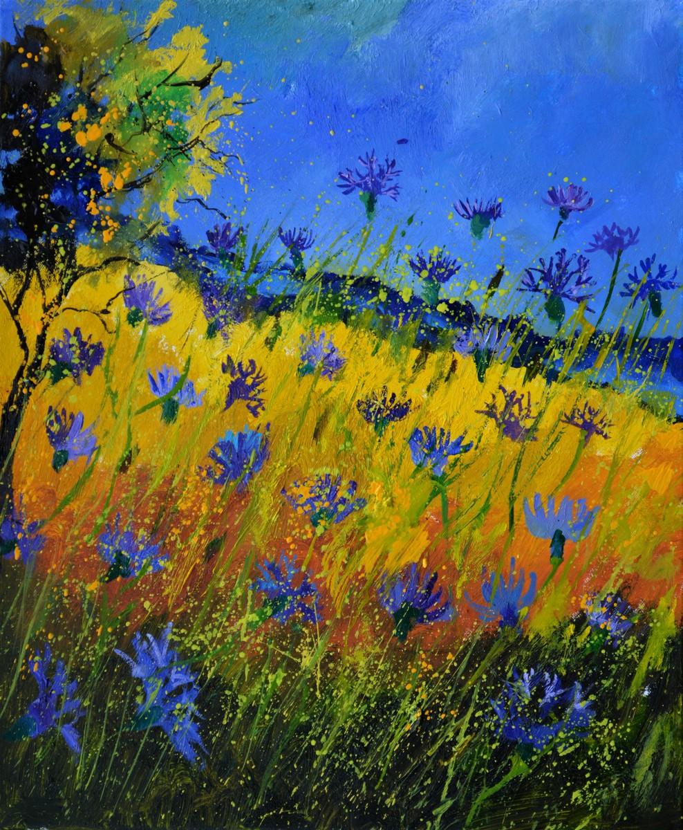 blue cornflowers 5661 (large view)