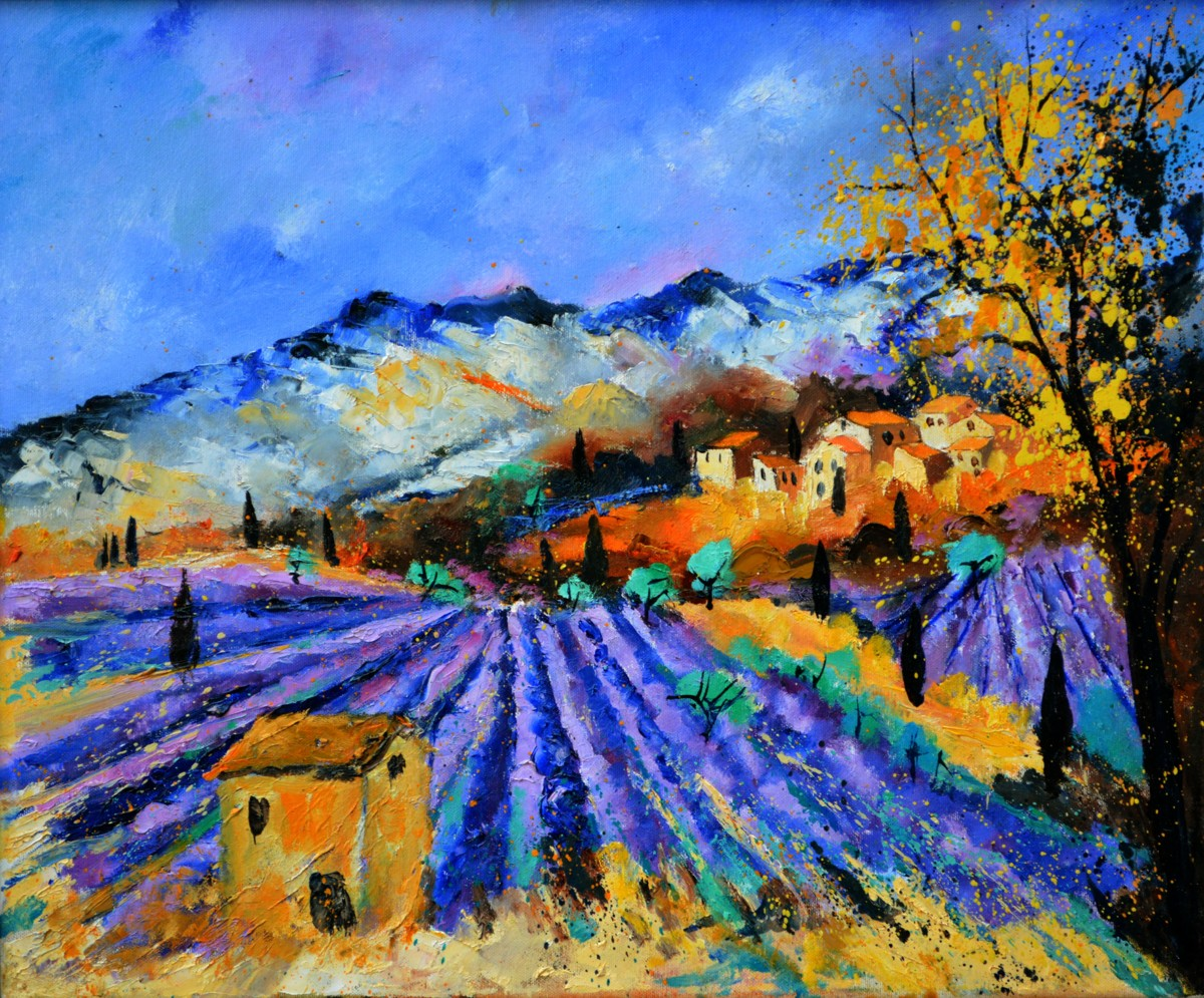 Provence 6571 (large view)