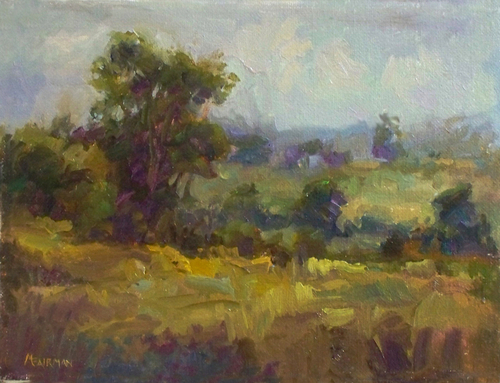 Fields - Late Summer