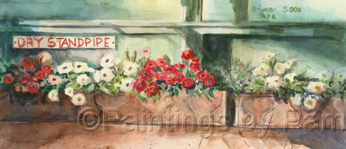 Flower Boxes by Pamela LoCicero