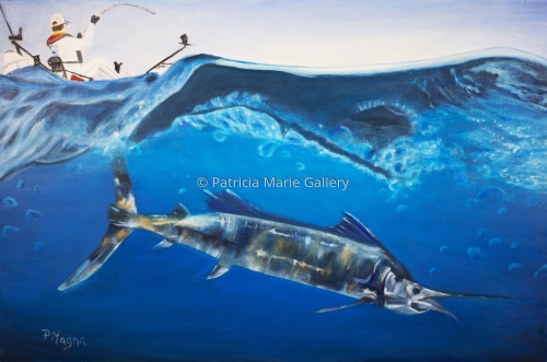 Atlantic Sail by Patricia Marie Gallery