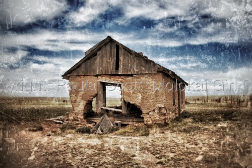 Old Barn by Paula  Scott: Molokai Girl Studio