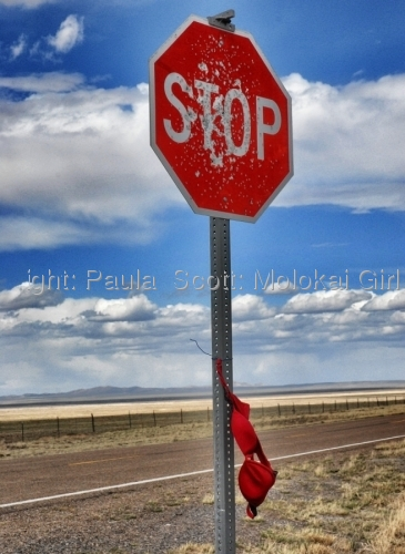 Red Bra Stop Sign