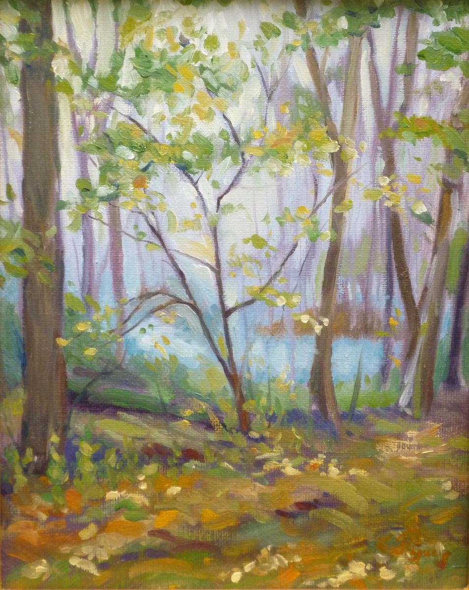 Walden Pond (large view)