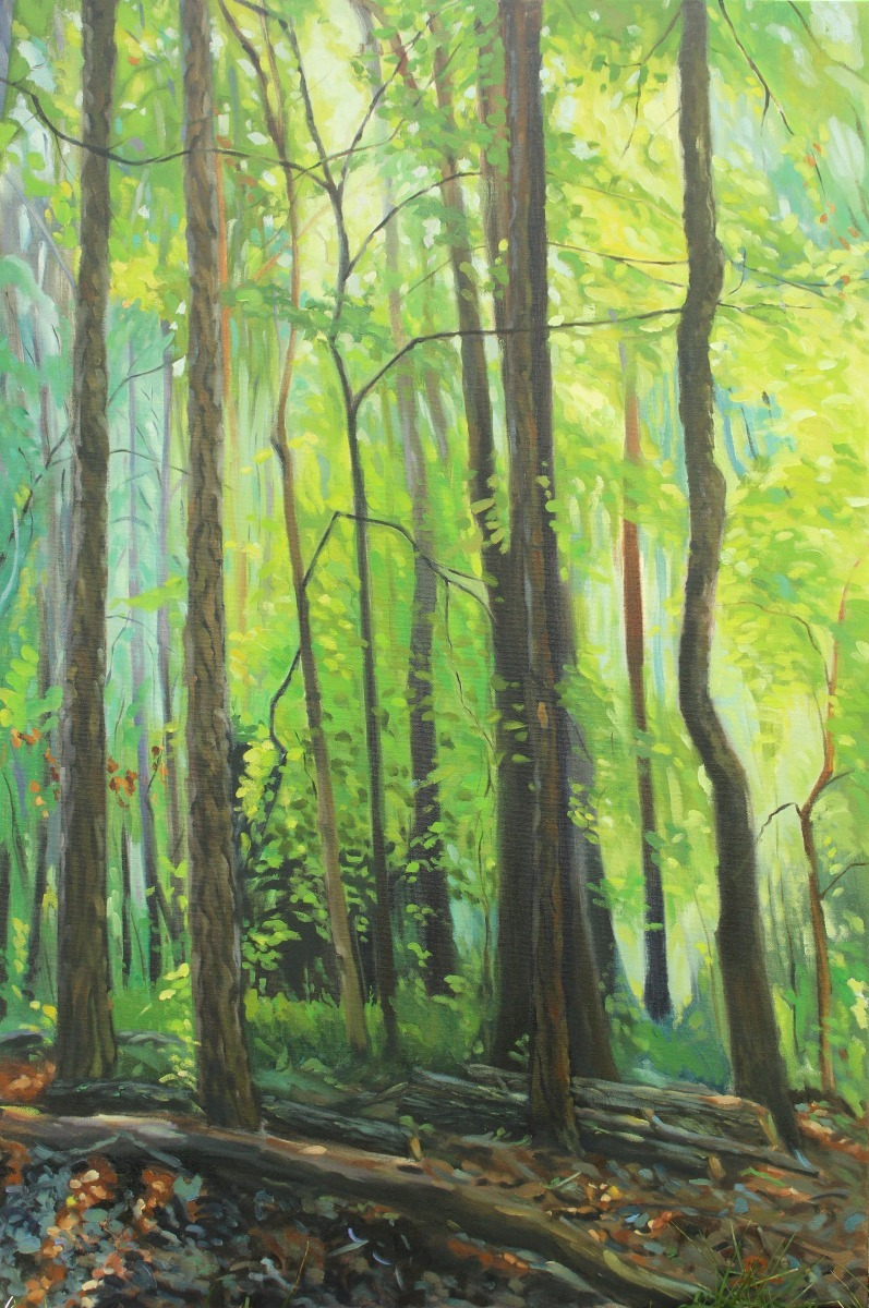 Emerald Forest (large view)