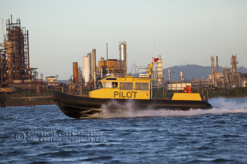 Pilot Point Lisas