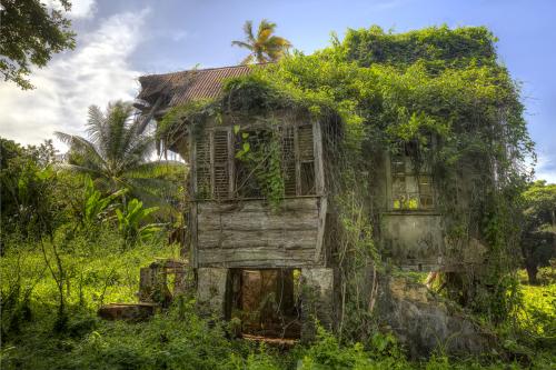 Wilsons House Tobago