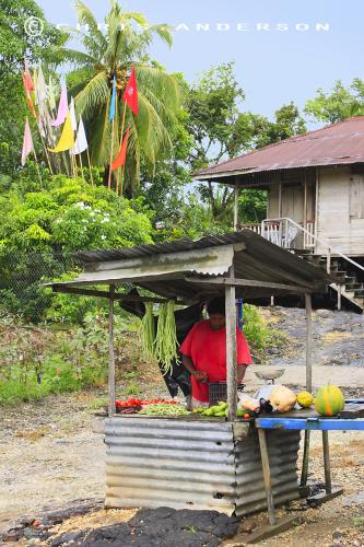 Country Vendor