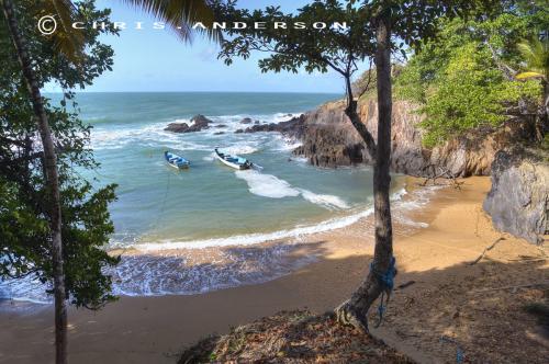 Pirogue Bay