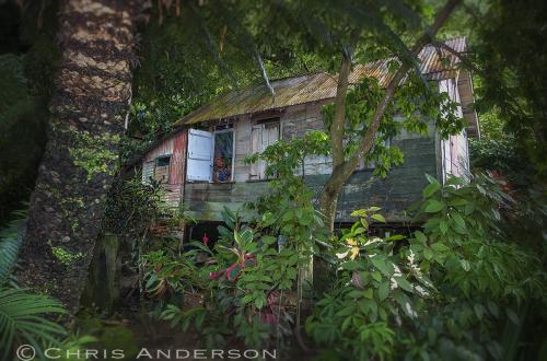 Old Station Tobago