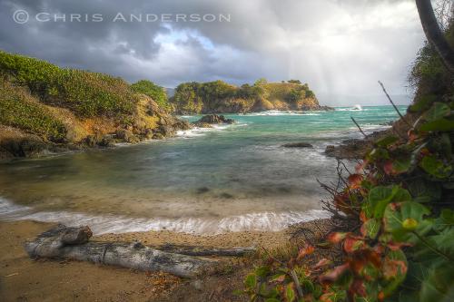 Tobago Rain