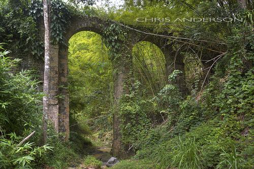 Aquaduct Tobago