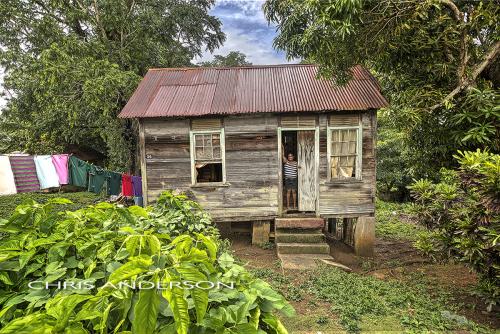Old House Tobago
