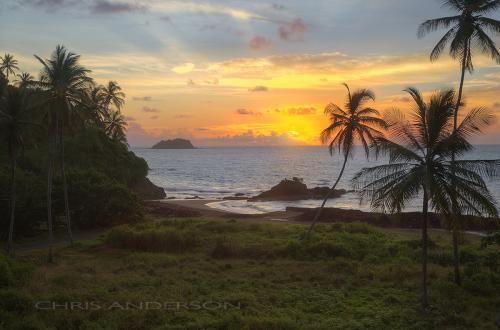Windward Sunrise